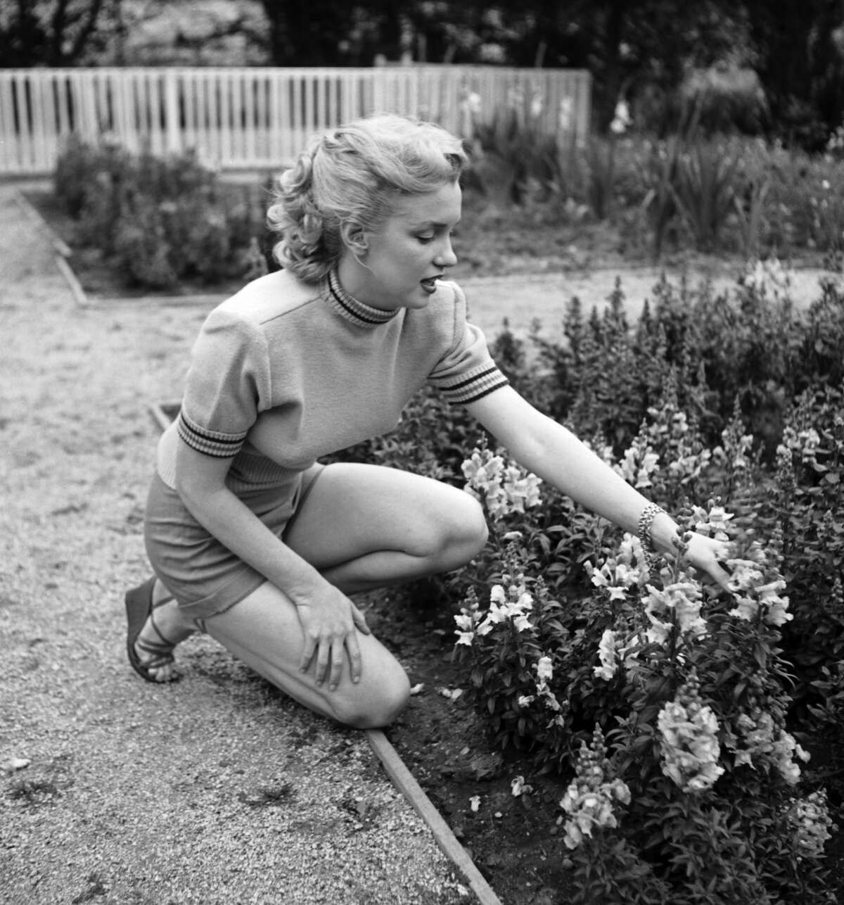 Actress Marilyn Monroe photo session at Hollywood agent Johnny Hyde's backyard on May 17, 1950 in Beverly Hills, California.