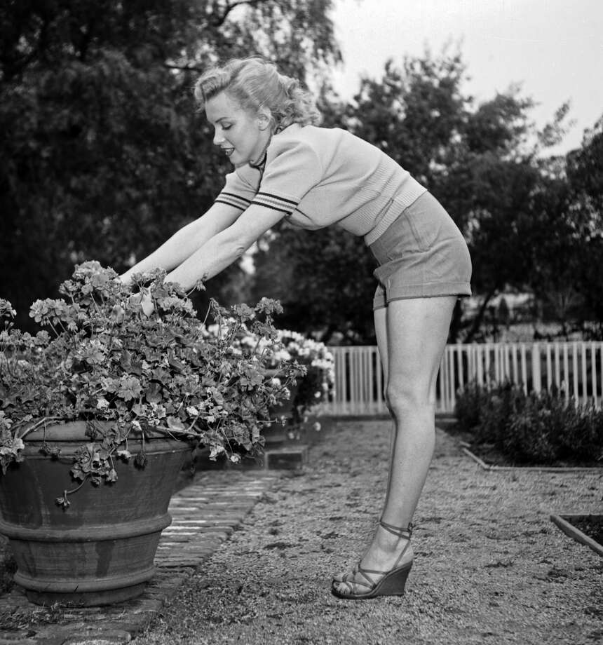 Actress Marilyn Monroe photo session at Hollywood agent Johnny Hyde's backyard on May 17, 1950 in Beverly Hills, California. Photo: Earl Leaf/Michael Ochs Archives/Getty Images