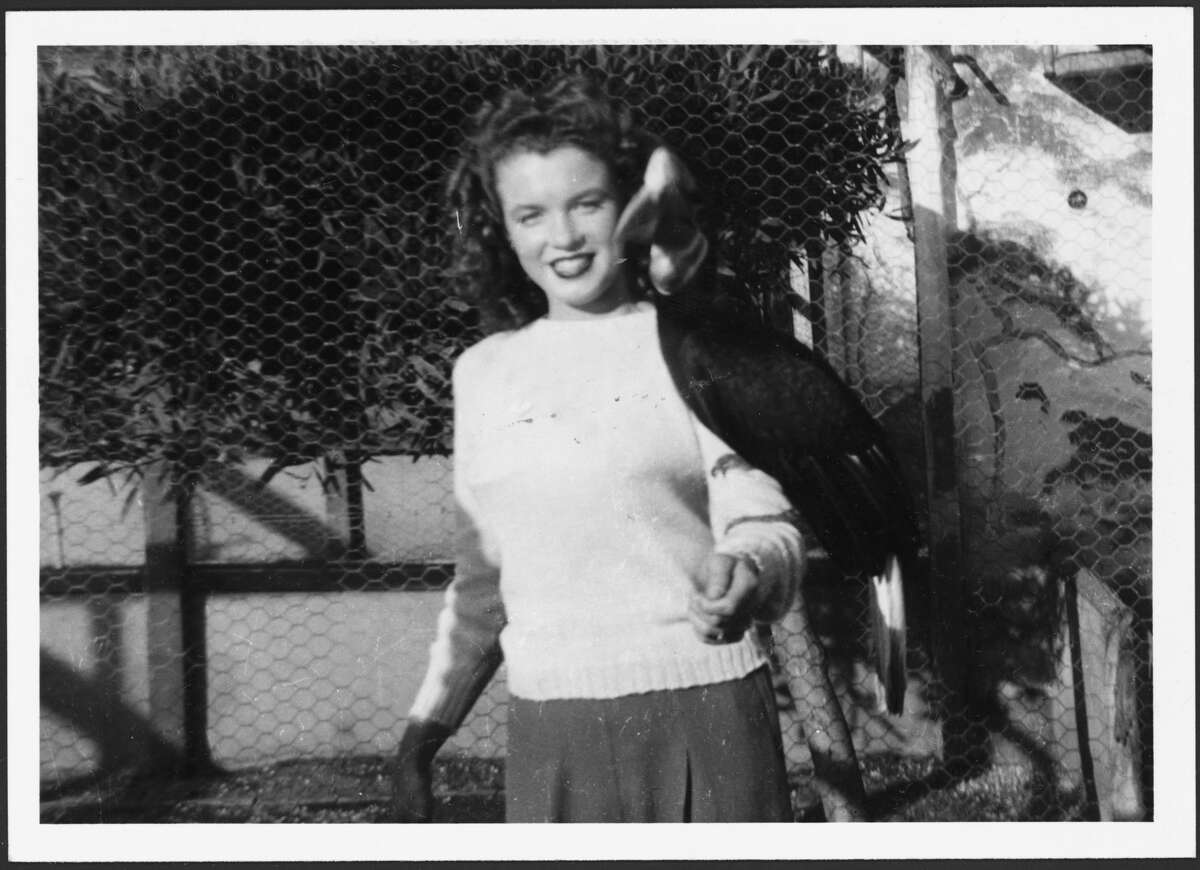 Norma Jeane Baker, future film star Marilyn Monroe (1926 - 1962), with a hornbill on her arm, 1940s.