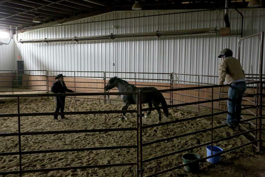Mitchell Reno, from Texas, right, a veteran of both Iraq and Afghanistan, watches Paddy McKevitt work with a wild mustang, Booyah. Photo: Nancy Stone /Chicago Tribune / Chicago Tribune