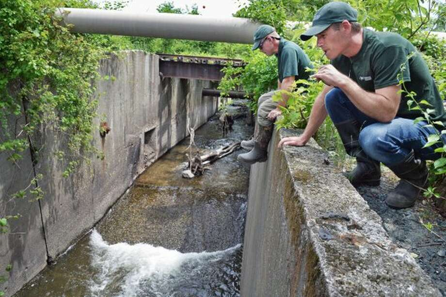 The state Departnent of Environmental Conservation Department's  Gregg Kenney and Scott Cuppett look for herring at the now clear mouth of the Wynants Kill in Troy on Thursday. (John Carl D'Annibale / Times Union)