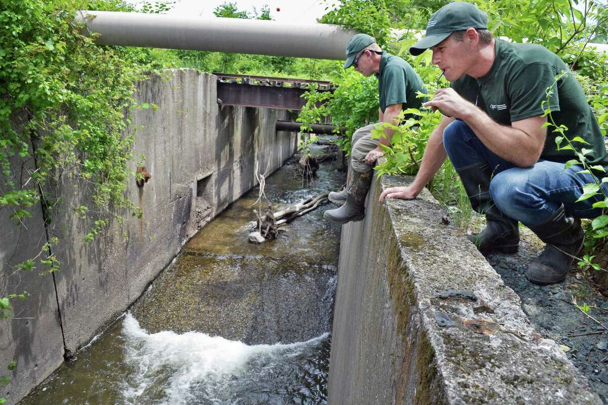 DEC biologist Gregg Kenney, left, and Scott Cuppett with DEC's Hudson tributaries management look for herring at the now clear mouth Wynants Kill Thursday June 2, 2016 in Troy, NY. Riverkeeper, NYS DEC and the City of Troy collaborated to remove a Tainter gate dam blocking fish migration on the Hudson River tributary. (John Carl D'Annibale / Times Union)
