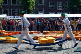 "At the Friday market in Alkmaar, carriers use a ""cheese-barrow"" to bring wheels to and from the Weigh House, just as they have for centuries."