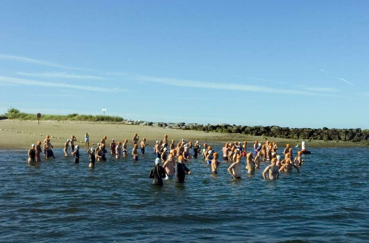 Swimmers get ready to start the 2 mile open swim off of Island Beach Saturday morning.