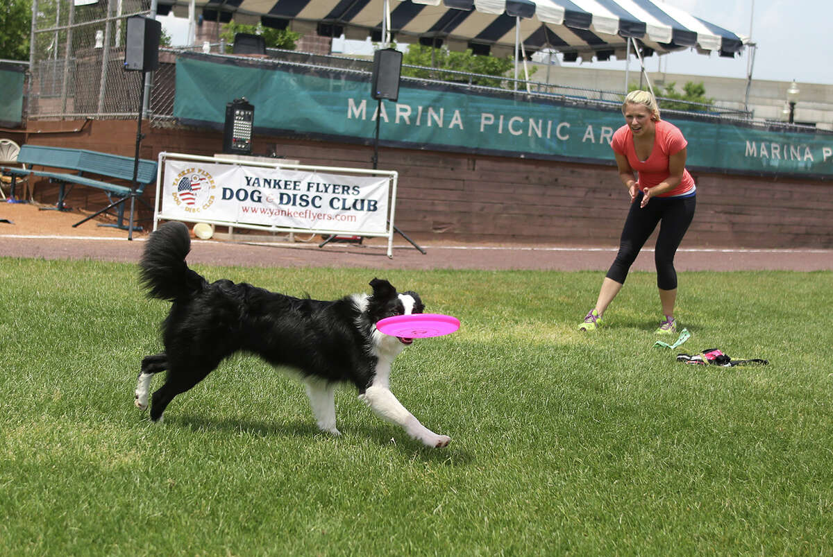 The 2016 Circles on Sounds Frisbee Festival opened at the Ballpark at Harbor Yard in Bridgeport, Connecticut on Saturday, June 4, 2016. The festival, which continues on Sunday, features frisbee golf, frisbee clinics and frisbee catching dogs.