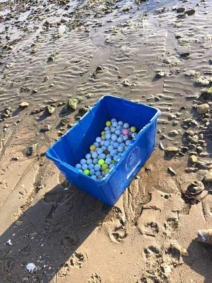 Golf balls being collected along the Rowayton shore. Photo: Contrtibuted / Hearst Conneticut Media