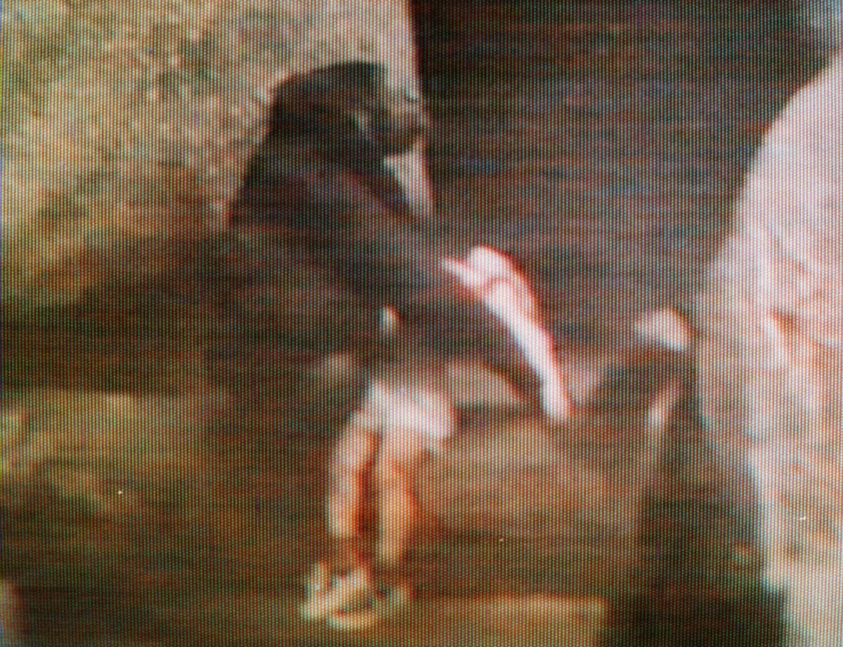 In this Friday, Aug. 16, 1996 file photo, Binti Jua, an 8-year-old female gorilla, carries an injured 3-year-old boy to a service gate after the child fell 18 feet to a concrete floor in the primate exhibit at the Brookfield Zoo in Brookfield, Ill. The boy climbed a 3-foot railing and fell in the primate exhibit at the zoo and is picked up by the motherly gorilla, who carries him in her arms to a gate where zookeepers could get him. A 3-year-old boy?'s breach of a gorilla exhibit at the Cincinnati Zoo on Saturday, May 28, 2016, leading authorities to fatally shoot the gorilla to protect the child, has focused attention on zoo enclosures and security. (AP Photo/WLS-TV, File)