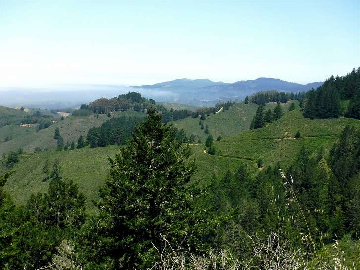 The view from the ridge above Whittemore Gulch at 1,600 feet looking toward Half Moon Bay and Montara Mountain as fog covers Pillar Point Harbor.�Chronicle readers won a lottery to join outdoors writer Tom Stienstra on a hike last week