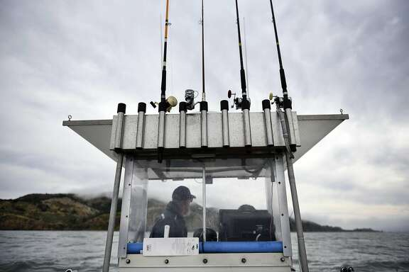 Steve Clark, of El Sobrante, looks out from the captains cockpit of his boat while fishing for halibut near Angel Island in San Francisco Bay on Saturday, June 4, 2016.