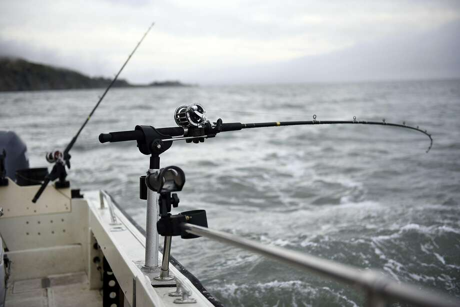 Fishing poles on Steve Clark's boat near Angel Island. Photo: Michael Short, Special To The Chronicle