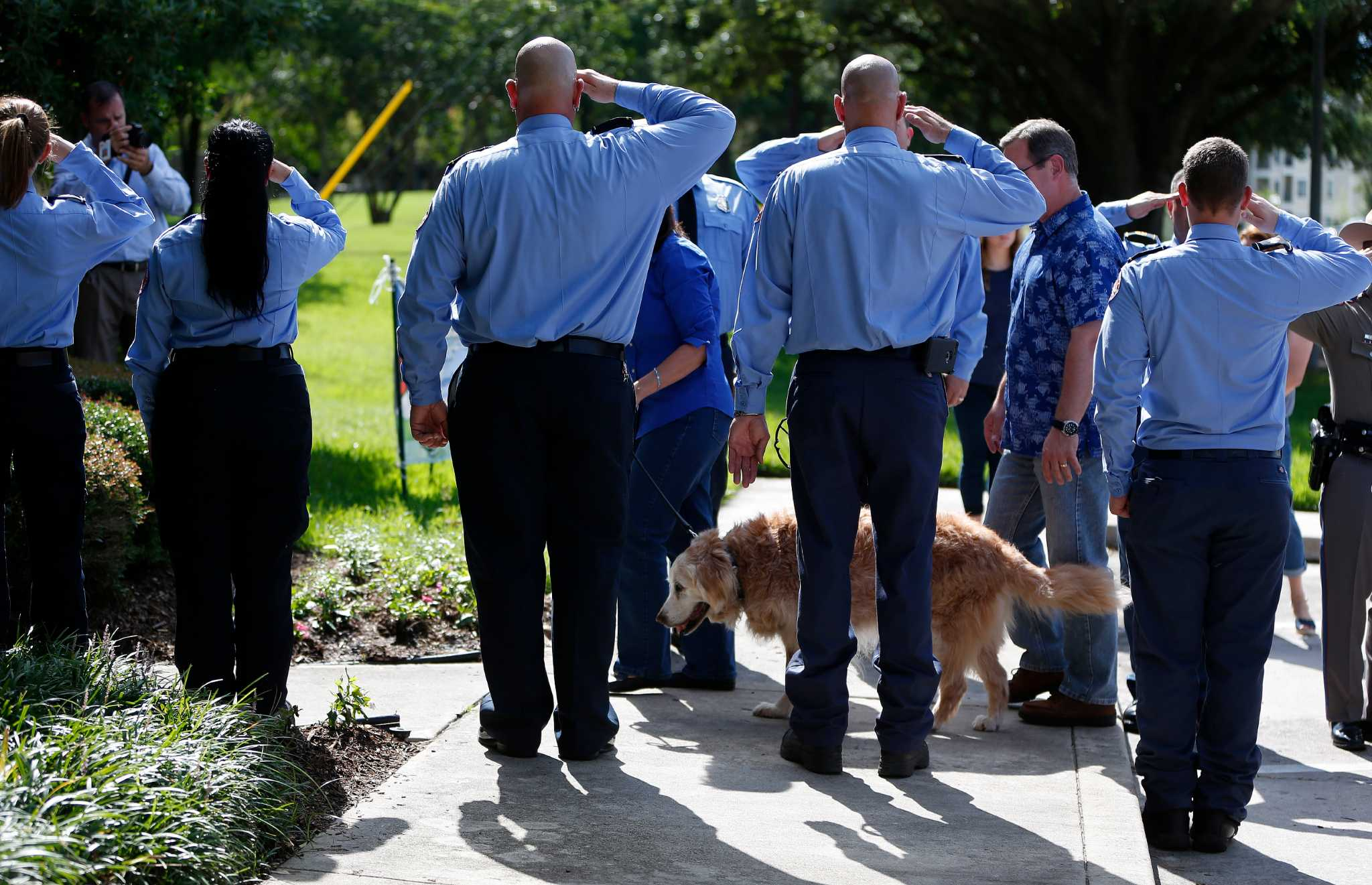 Last Known 911 Search Dog Euthanized In Houston Area Houston
