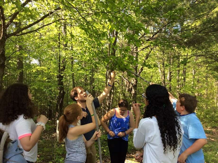 Andrew Randazzo, 4-H Natural Environment Educator, helps the WAJ Elementary Science Club members to identify trees. (Submitted photo)