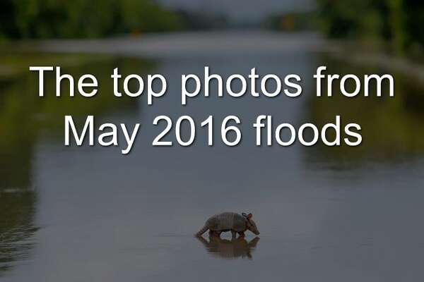Editor's picks flooding composite