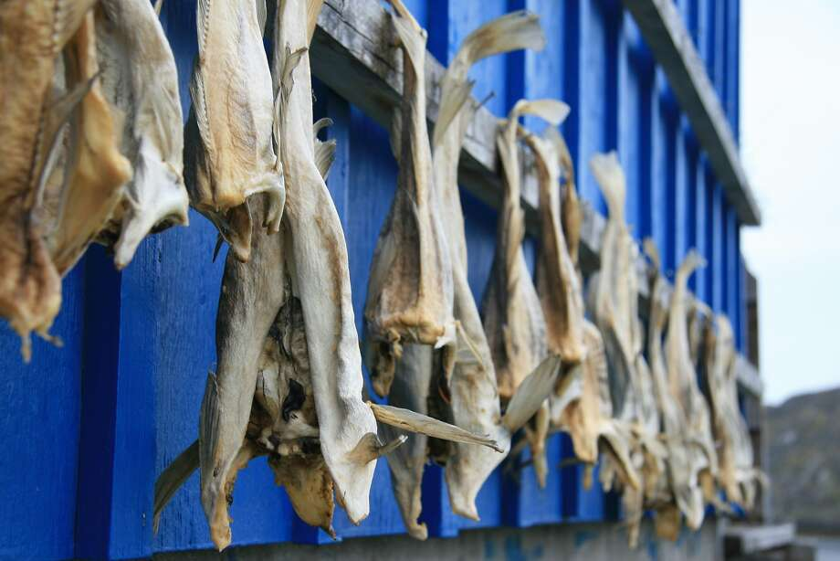 Dry fish is a dietary staple for locals in western Greenland. Photo: Todd Pitock, Special To The Chronicle
