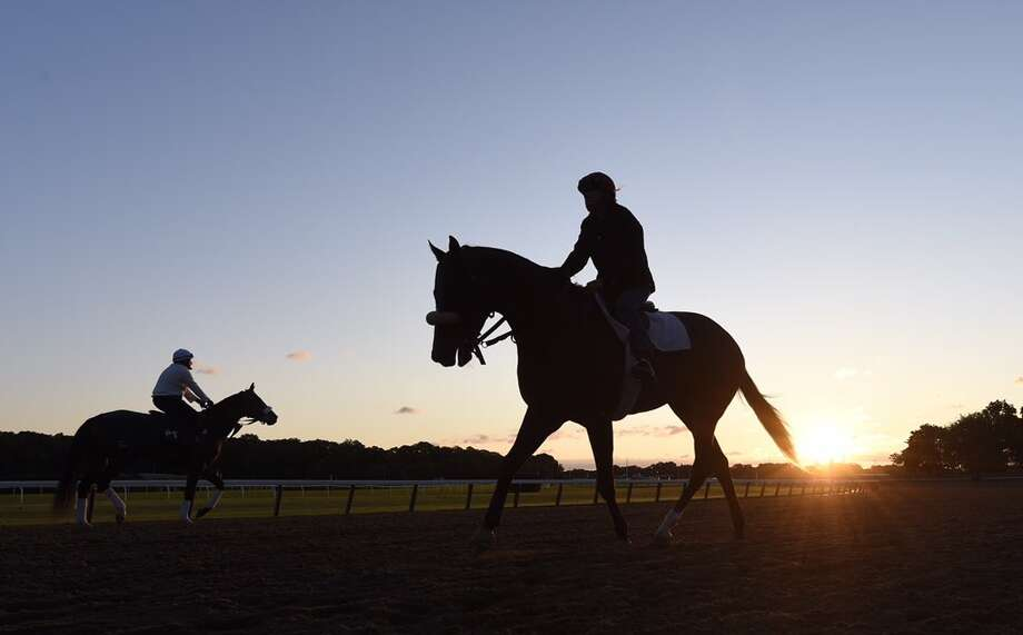 Two days before the 148th running for the Belmont Stakes, the thoroughbred horses hit the Elmont track at sunrise on Thursday. (Skip Dickstein / Times Union)