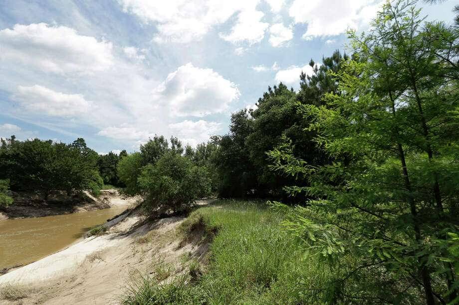 Cypress Creek is shown along the 100 Acre Wood Preserve, Wednesday, June 8, 2016, in Cypress. ( Melissa Phillip / Houston Chronicle ) Photo: Melissa Phillip, Staff / © 2016 Houston Chronicle