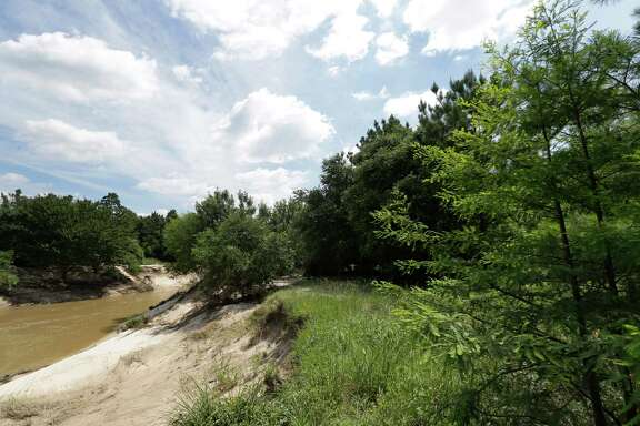 Cypress Creek is shown along the 100 Acre Wood Preserve, Wednesday, June 8, 2016, in Cypress. ( Melissa Phillip / Houston Chronicle )