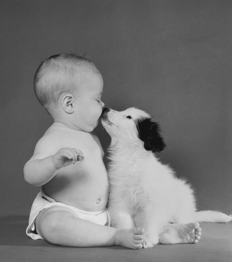 Springtime has long passed us and adorable baby portraits are making their rounds. The only thing cuter than a baby photo, is a baby photo paired with their family dog. Photo: Getty Images