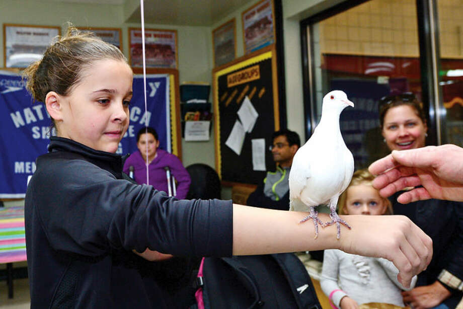 Carter Mendez, 9, gets close to a Asian Collared Dove from Fur, Feathers and Beyond during the Wilton YMCA Healthy Kids Day.