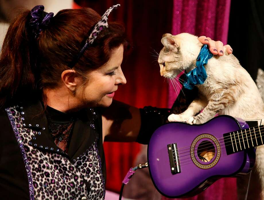 Samantha Martin pets Nola the cat after an Acro-cats performance at Southside Theater in San Francisco, California, on Thursday, June 9, 2016. Photo: Connor Radnovich, The Chronicle