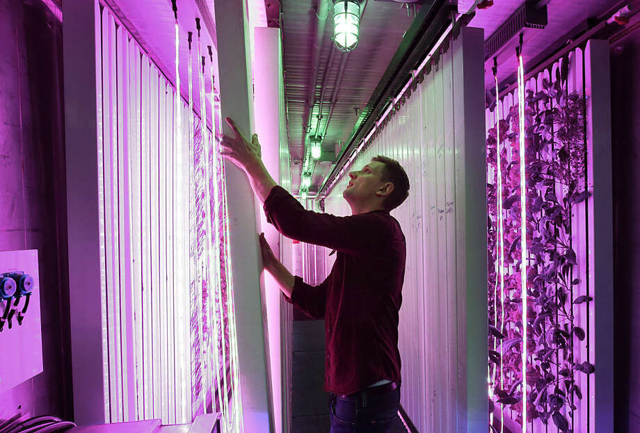 In this Tuesday, Dec. 8, 2015, photo, Freight Farms co-founder Jon Friedman positions a seedling tower under red light, inside a freight container converted into a vegetable garden in Boston. The Boston-based company is repurposing shipping containers as mobile farms. Freight Farms sells 320-square-foot containers equipped with high-tech hydroponic equipment that's capable of producing the typical yield for two acres of farmland in any climate, and uses 90 percent less water. (AP Photo/Steven Senne)
