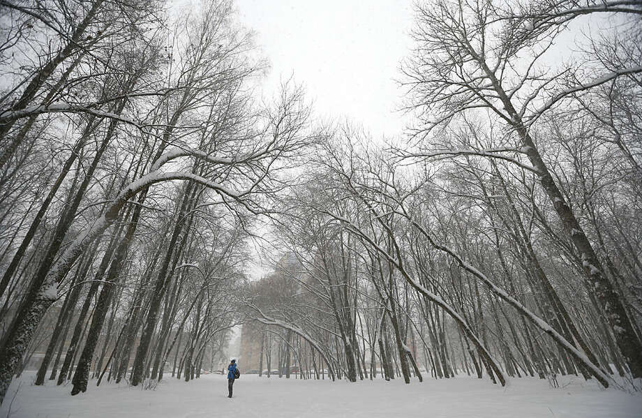 A man speaks on mobile phone as he stands in the park as snow falls in the Belarus capital Minsk, Tuesday, Jan. 12, 2016. Winter weather with snow continues to prevail in Belarus. (AP Photo/Sergei Grits)