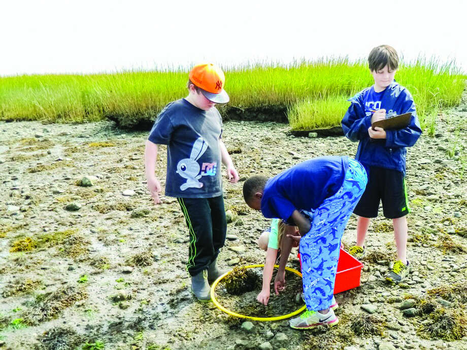 The Mead School: Marine science at Mead