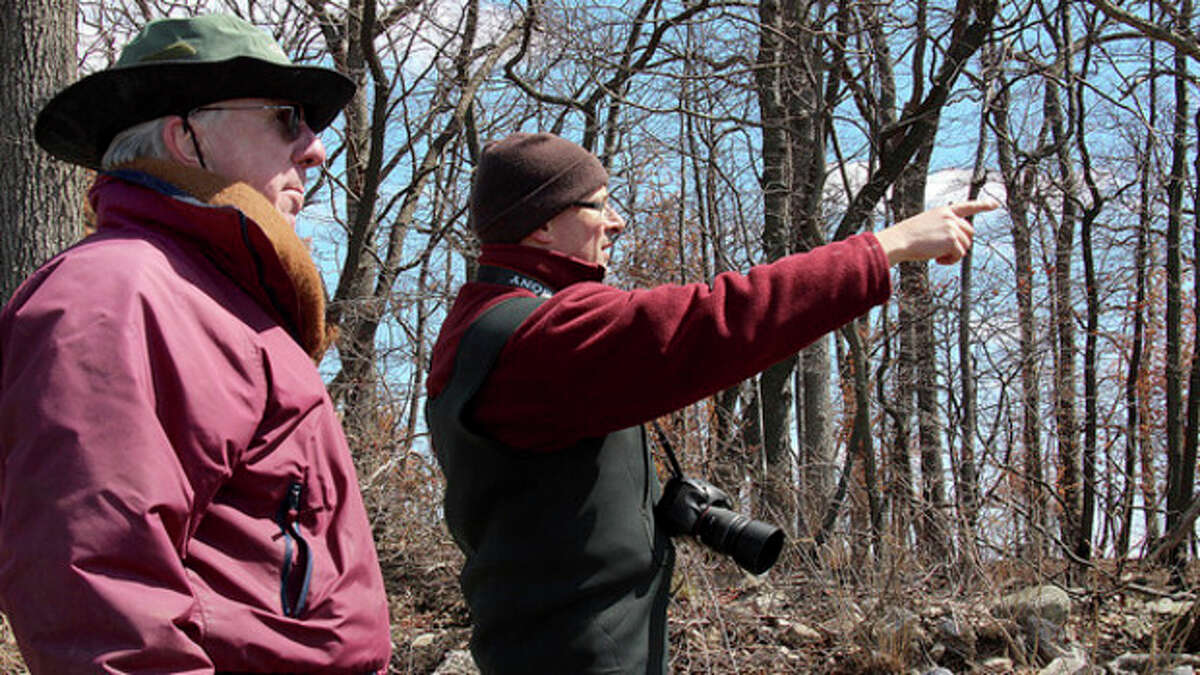 Photo by Chris Bosak Anthony Zemba, director of conservation services with Connecticut Audubon Society, points out invasives to John Moeling of the Norwalk Land Trust during a walk-through at Hoyt Island recently. Moeling was named the new president of the Norwalk Land Trust on Tuesday.
