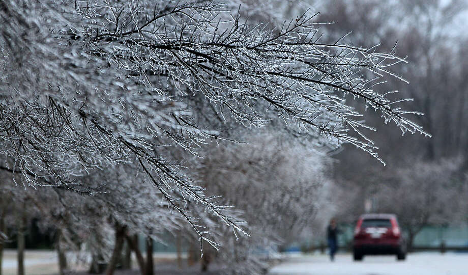 Ice coats tree limbs at Riverview Farm Park, Wednesday morning, Jan. 14, 2015, in Newport News, Va. State transportation officials are advising motorists to be careful on Virginia roads because of icy conditions. (AP Photo/The Daily Press, Adrin Snider)