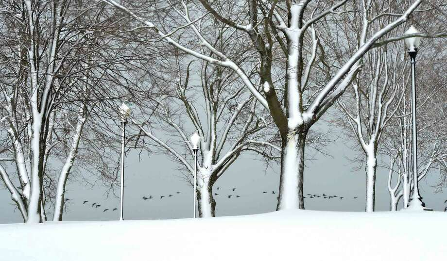 Hour Photo/Alex von Kleydorff Snow covers the sides of trees and lamp posts along Shady beach as a flock of geese fly by over Long Island Sound