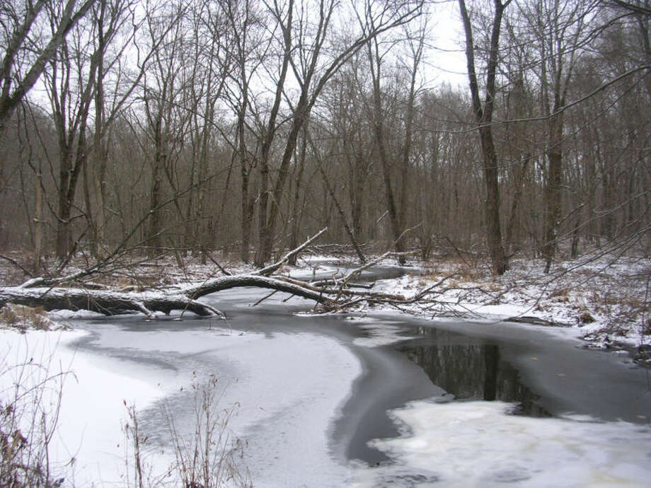 Photo by Rob McWilliams West Branch Saugatuck on Saugatuck Trail in Devil's Den in winter.