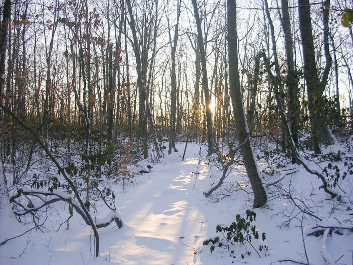 Photo by Rob McWilliams Hiltebeitel Trail in Devil's Den in winter.