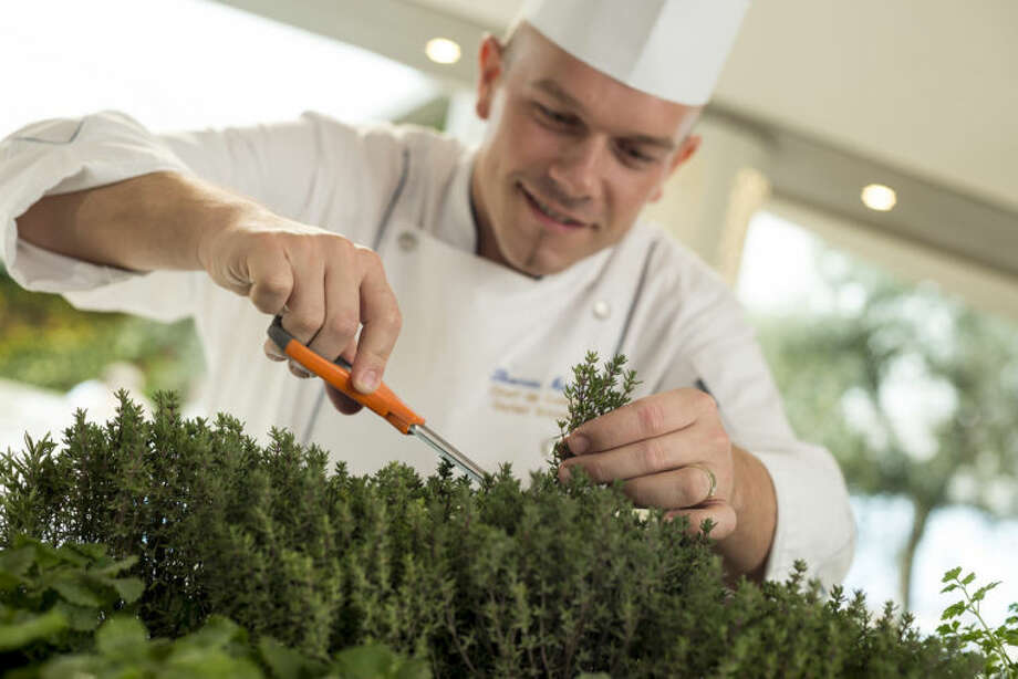 This undated image provided by Crystal Cruises shows a chef on the Crystal Serenity cruise ship snipping fresh herbs from the ship's onboard herb garden. The herb garden is part of Crystal Cruises' emphasis on fresh ingredients and flavors, part of a broader trend in the cruise industry to expand culinary offerings with specialty restaurants, menus from celebrity chefs and a greater variety of cuisines. (AP Photo/Crystal Cruises)