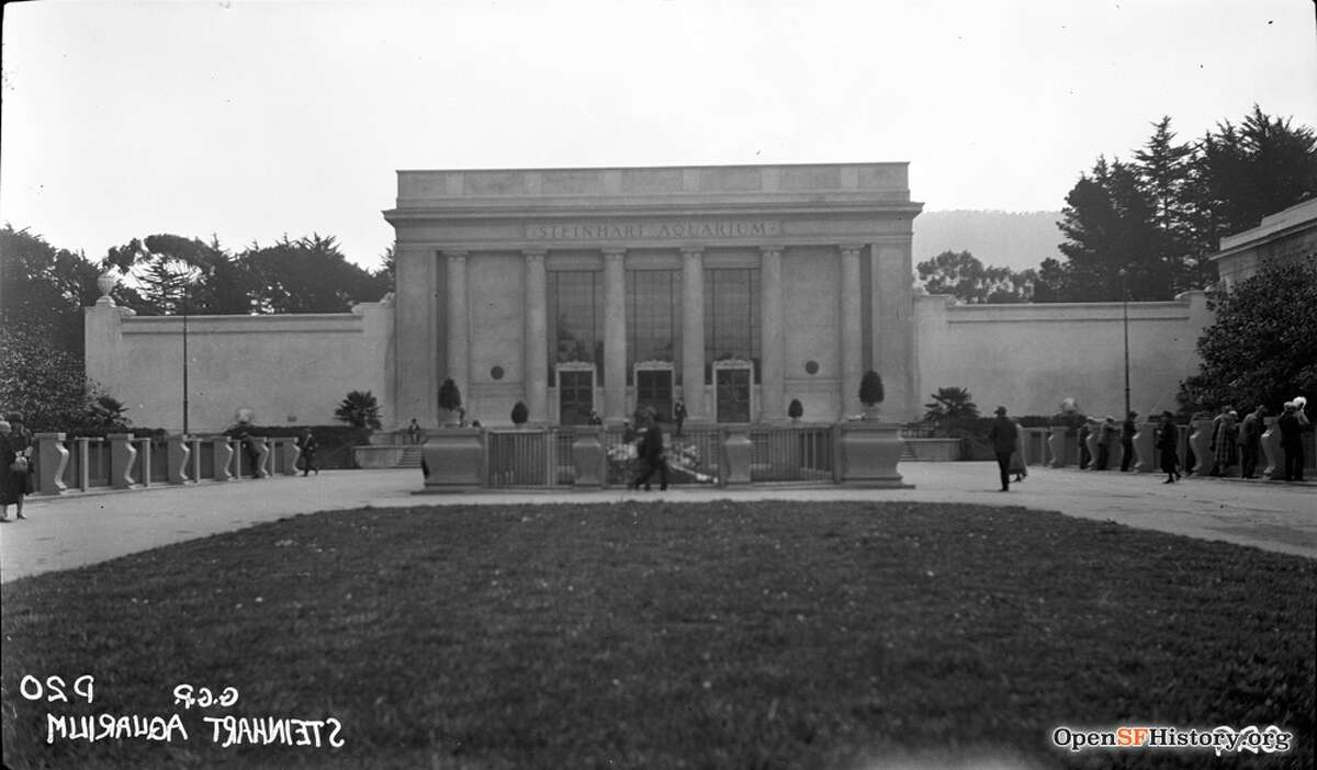 1920s: Steinhart Aquarium, Golden Gate Park Jul 1, 1926., Previous iteration of the California Academy of Sciences. Courtesy of OpenSFHistory.org