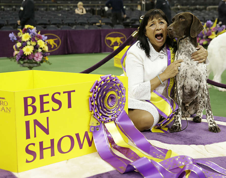Valerie Nunes-Atkinson and CJ, a German shorthaired pointer, pose for photographers after CJ won best in show at the 140th Westminster Kennel Club dog show, Tuesday, Feb. 16, 2016, at Madison Square Garden in New York. (AP Photo/Seth Wenig)