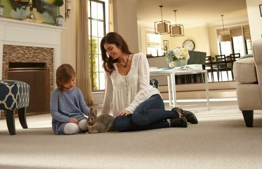 Pet Owners: Tips to Keep Floors in Tip Top Shape