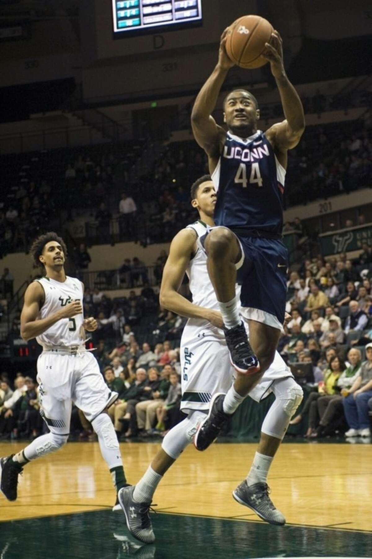 Connecticut's Rodney Purvis (44) scores past South Florida's Nehemias Morillo (5) and Angel Nunez, center, during the first half of an NCAA college basketball game Thursday, Feb. 25, 2016 in Tampa, Fla. (AP Photo/Steve Nesius)