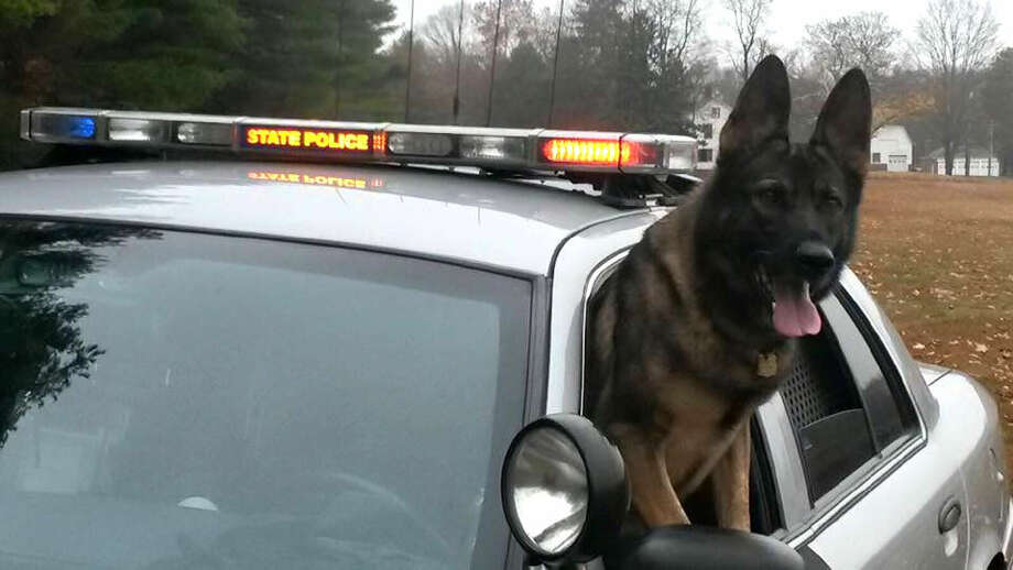 Connecticut State Police's K-9 Jesse will receive a bullet and stab-protective vest thanks to a donation from non-profit organization Vested Interest in K9s, Inc.