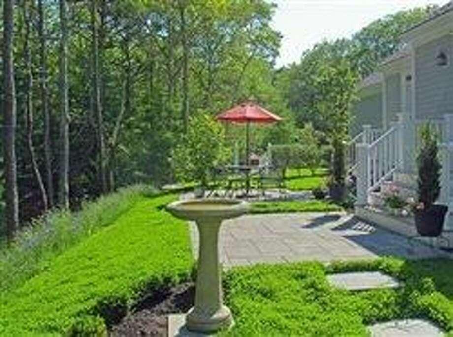 Clover comeback: Today's twist to a lush, green, easy, eco-smart lawn alternative