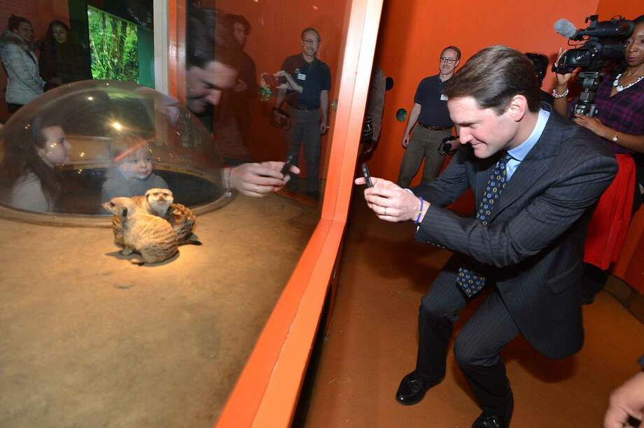 Hour Photo/Alex von KleydorffCongressman Jim Himes takes a cell phone photo of the Meerkats as two of them seem to pose in the exhibit at The Maritime Aquarium.