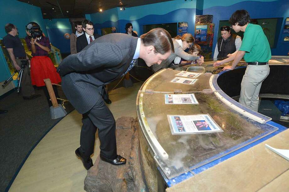 Hour Photo/Alex von Kleydorff Congressman Jime Himes stops at one of the touch tanks during a tour of The Maritime Aquarium