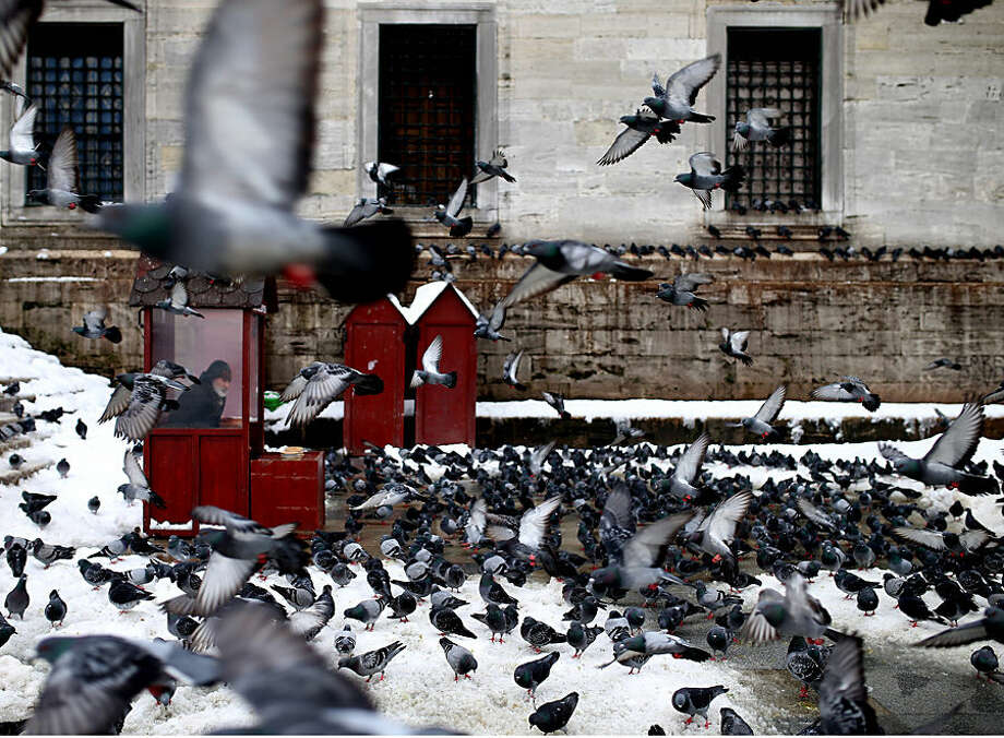 A man selling food for pigeons sits in a cubicle, near Yeni Cami, in Istanbul, Turkey, Thursday, Feb. 19, 2015. Turkey's largest city, Istanbul, has been hit by a storm that has dumped up to a 60 centimetres (24 inches) of snow in some areas since Tuesday, wreaking havoc on roads. (AP Photo/Emrah Gurel)