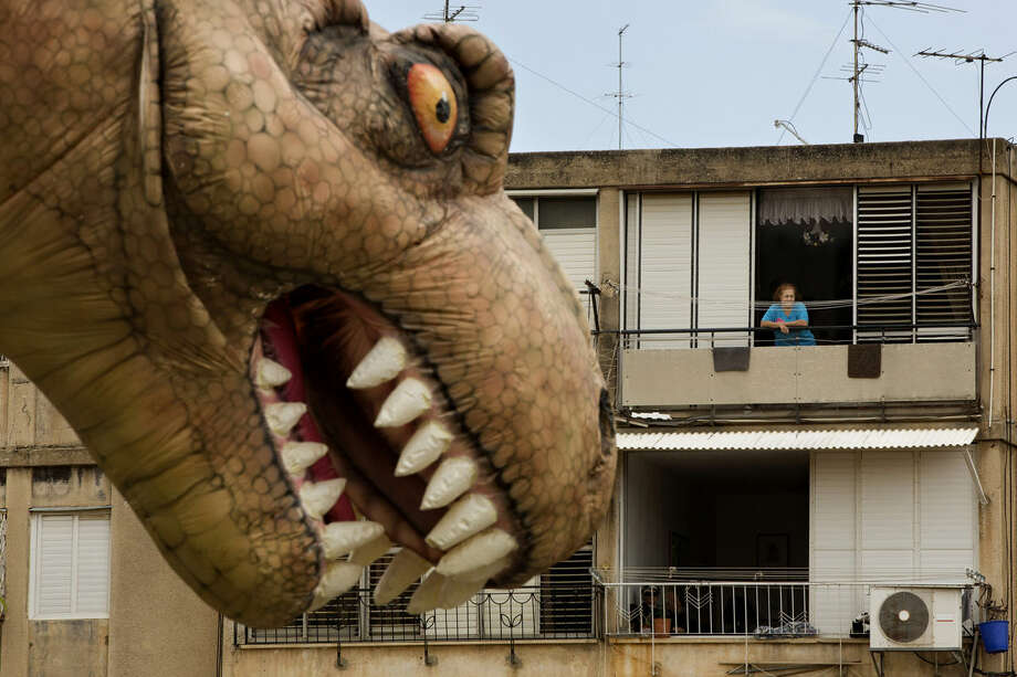 An Israeli spectator watches a giant T-Rex balloon during the Purim parade festival in Petah Tikva, Israel, Thursday, March 24, 2016. The Jewish holiday of Purim commemorates the Jews' salvation from genocide in ancient Persia, as recounted in the Book of Esther. (AP Photo/Oded Balilty)