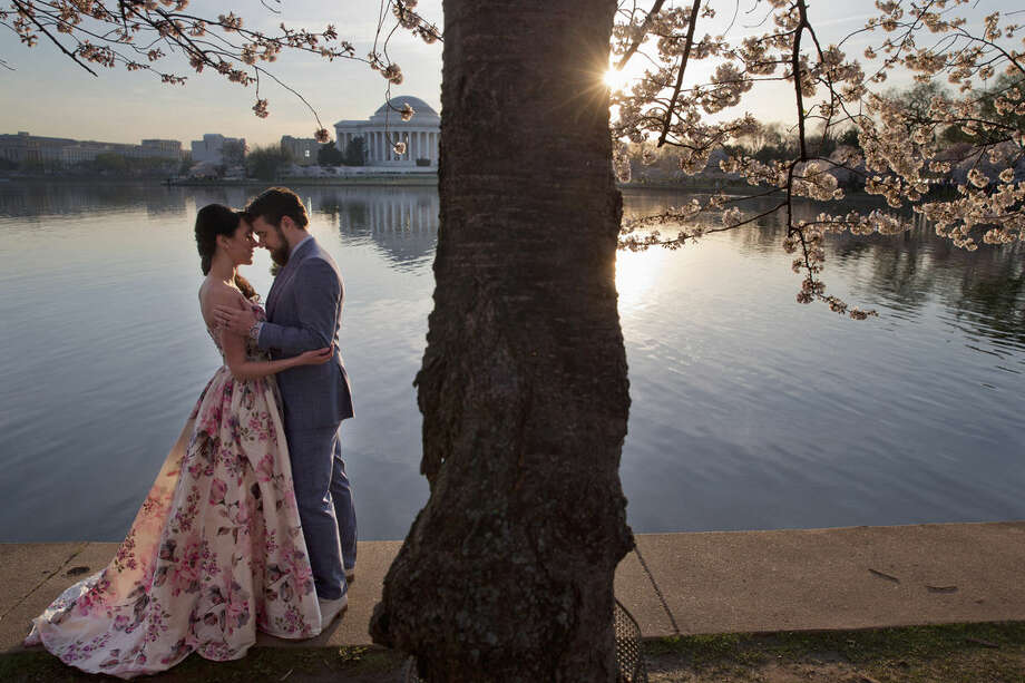 Suzy Dodge, 32, left, and Justin Cook, 35, of Washington, pose for a portrait in advance of their wedding, for photographer Amelia Johnson, under cherry blossoms in bloom at the tidal basin in Washington, Thursday, March 24, 2016. In the background is the Jefferson Memorial, where the couple are going to be married on April 8th. (AP Photo/Jacquelyn Martin)