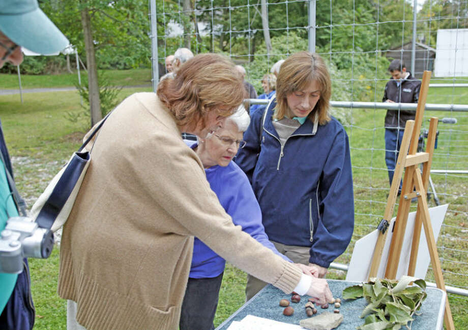 Pat Van De Kamp, Jeanne McAndrew and Lynda Falcone observe chestnuts during the Norwalk Tree Alliance's dedication of Fairfield CountyÕs first municipal tree farm incorporating a solar-powered irrigation system at Fodor Farm's community garden in Norwalk Friday afternoon. Hour Photo / Danielle Calloway
