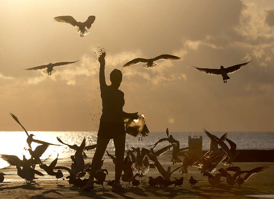 Noreen Clar of Surfside, Fla., feeds birds as the sun rises, Tuesday, April 5, 2016, in Bal Harbour, Fla. According to the National Weather Service, temperatures in the area will reach the upper 70's. (AP Photo/Wilfredo Lee)