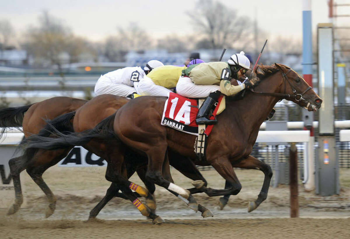 In this photo provided by the New York Racing Association, Samraat, with Jose L. Ortiz aboard, captures the Gotham Stakes horse race at Aqueduct Racetrack in New York, Saturday, March 1, 2014. (AP Photo/New York Racing Association, Chelsea Durand)