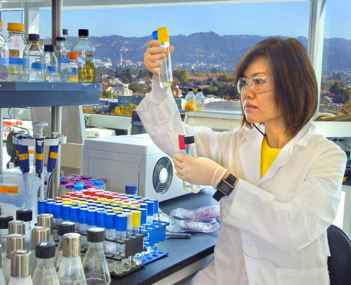"""Lawrence Berkeley Nationall Laboratory/Roy Kaltschmidt A researcher - using """"synbio"""" to engineer new microbes as an alternative to yeast for turning complex sugars into biofuels."""