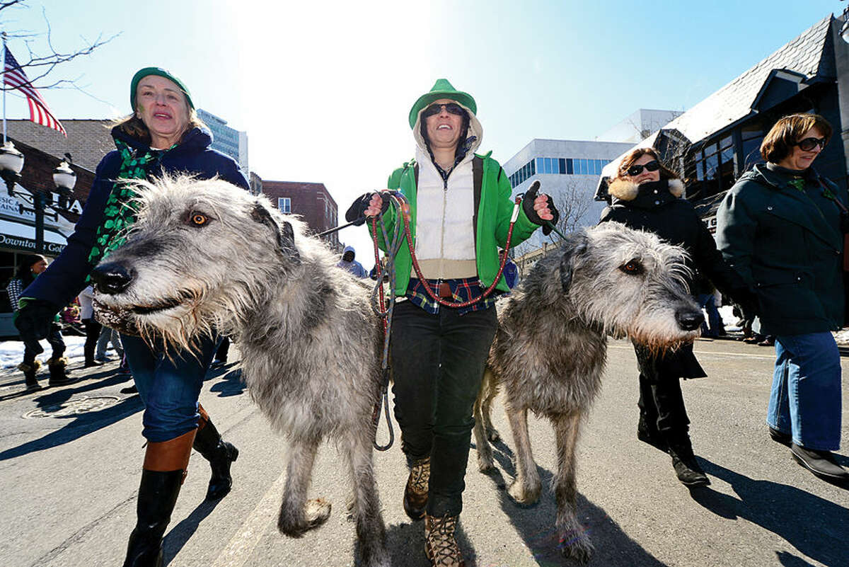 Hour photo / Erik Trautmann The City of Stamford St Patrick's Day Parade participants and local residents including Debbie Tirado and her two Irish Wolf Hounds, Emerson and Lucky, enjoy the sunny Saturday afternoon as the procession proceeds down Bedford St.