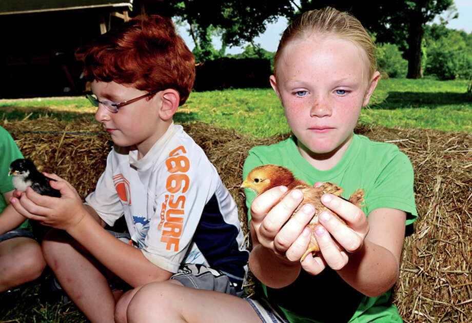 Campers Abby Petrie and Griffin Kovach, both 6, handle baby chicks as Ambler Farm begins its summer programs for preschoolers and students grades 1-7 this week through July. The programs introduce children to animals on the farm, harvesting, hayrides, woodworking and planting. / (C)2013, The Hour Newspapers, all rights reserved